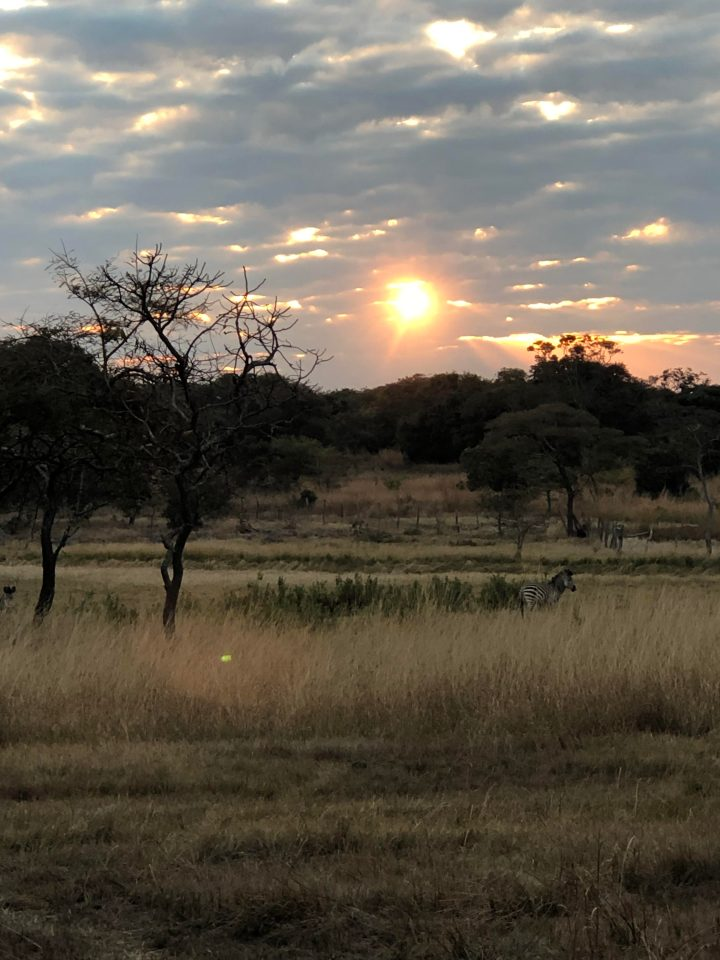 Zambia Trip Highlights